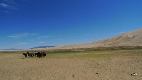 Khongor Sand Dune @ Mongolia